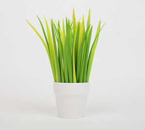Pens that look like grass!
