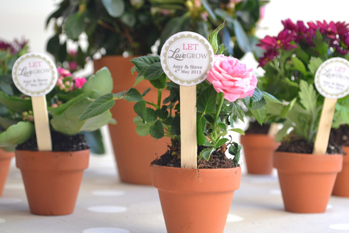 Loving these gorgeous potted flowers wedding favors! @pinkmitten.com #weddingfavors #plantfavors #flowerfavors