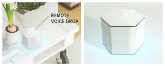 voice-pods