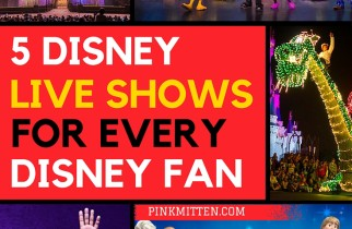 5 Disney Live Shows for Every Disney Fan's Bucket List @pinkmitten.com #disney #disneyshows #disneycruises #broadway